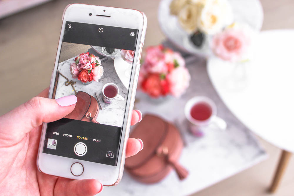 How to create a cohesive Instagram feed that attracts followers